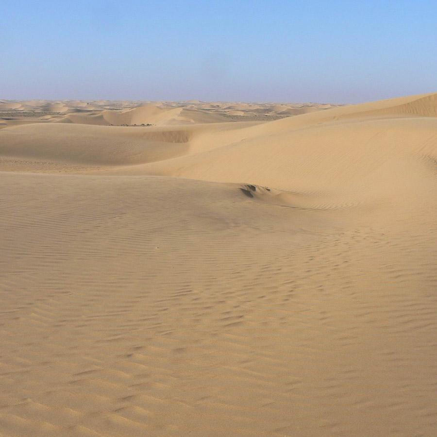 sahara-dune